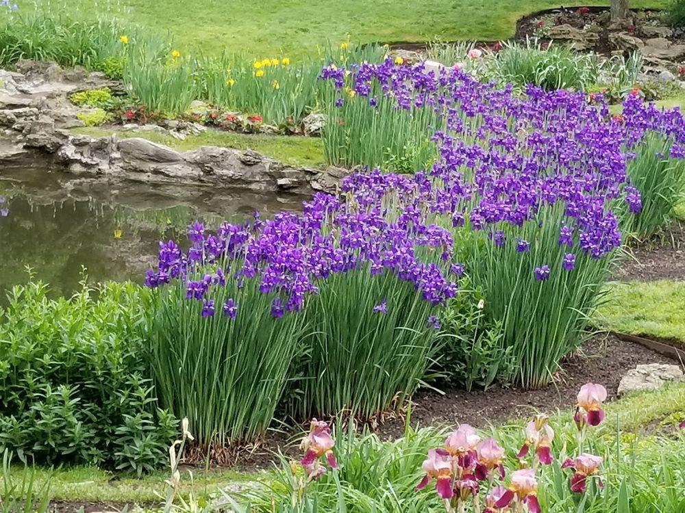 Smith Memorial Gardens - 202 Photos - Parks - 820 Oakwood Ave ...
