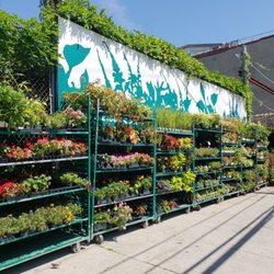 photo of chelsea garden center west brooklyn ny united states i think - Chelsea Garden Center