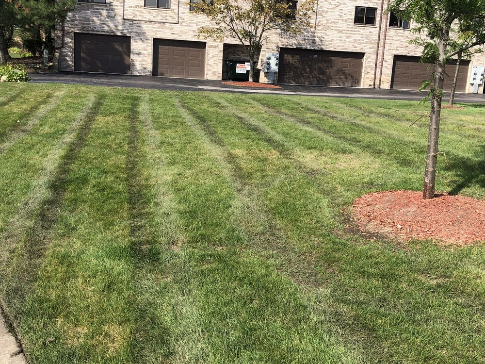 Three Brothers Landscaping: 16108 S Laramie Ave, Oak Forest, IL