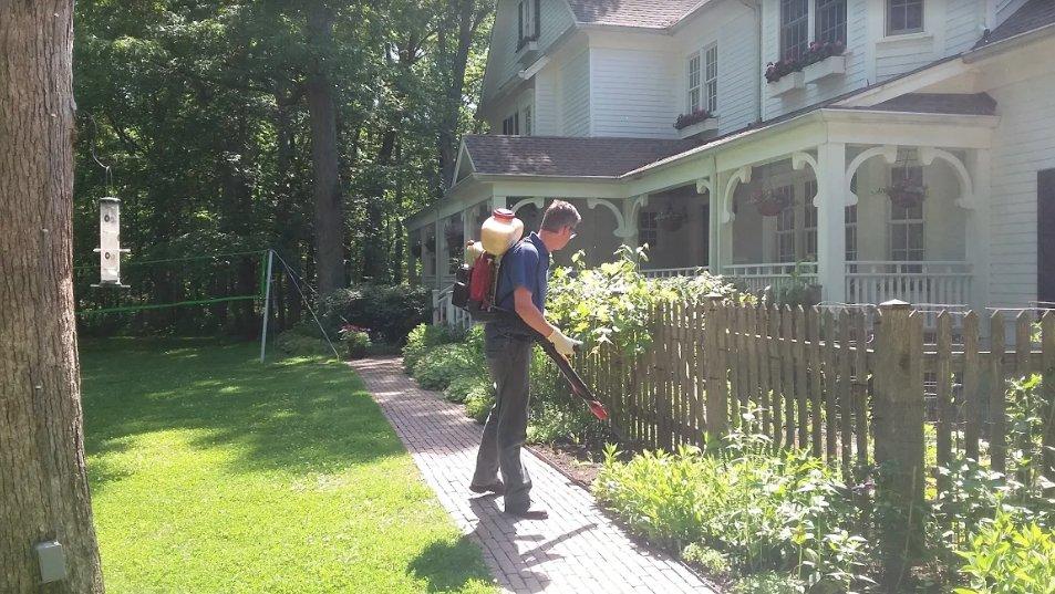 Smithereen Pest Management Services: 915 Charlotte St, Kansas City, MO