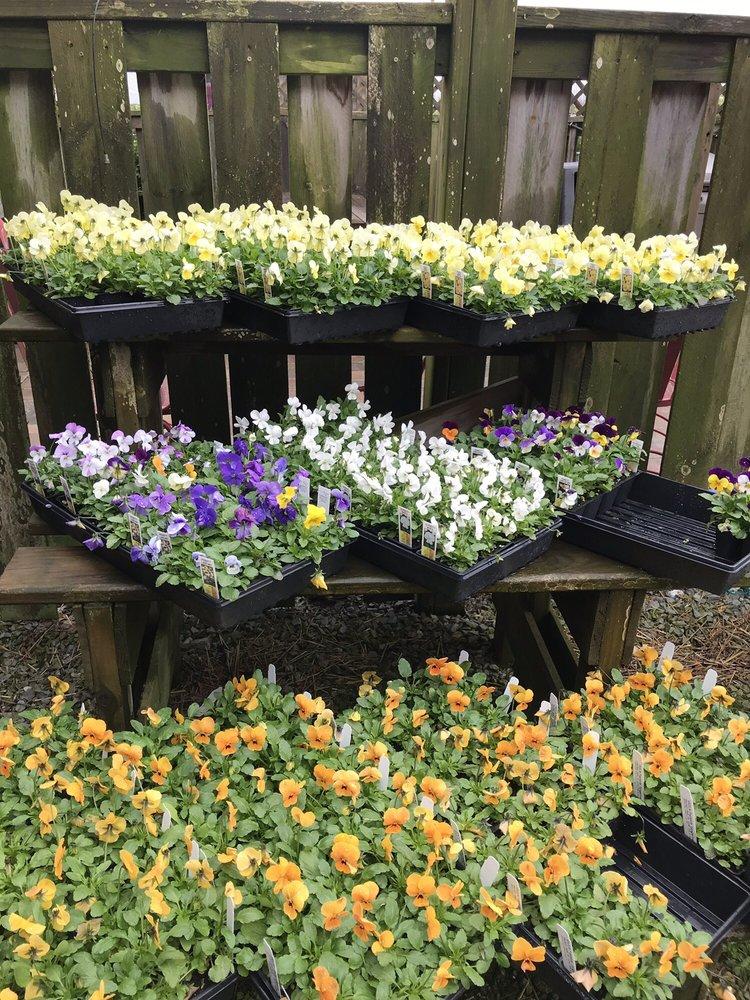 Garden Gate Greenhouse: 3415 E 500th S, Peru, IN