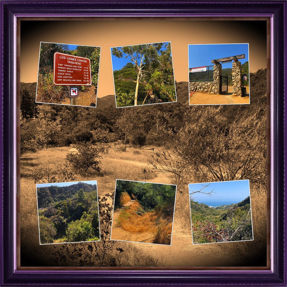 Los Liones Canyon Trailhead