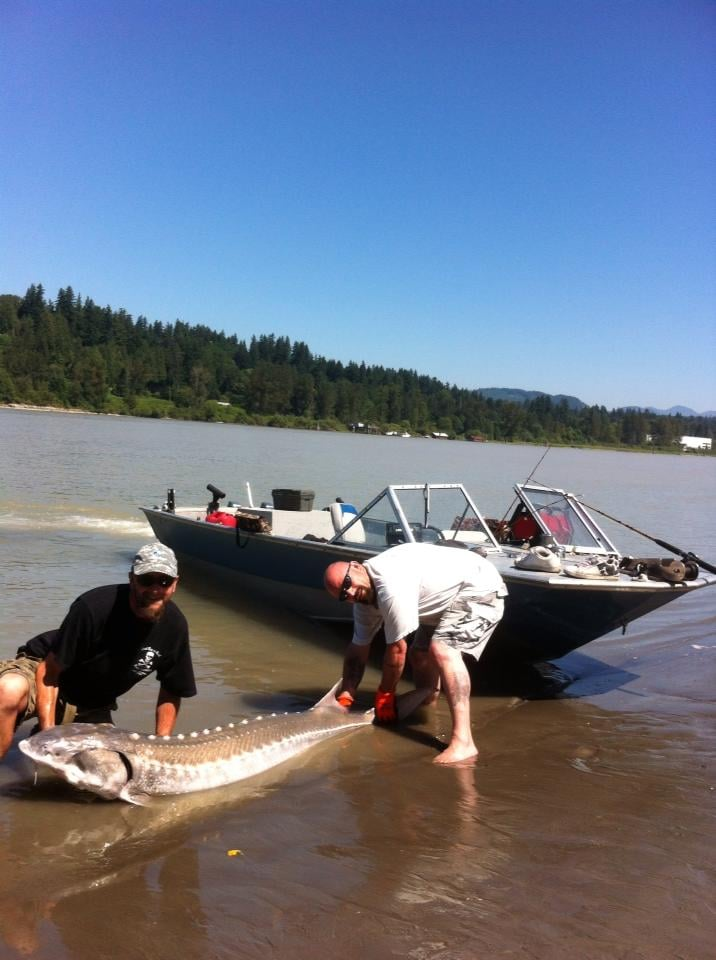 Angler management fishing charters fishing surrey bc for Sound bound fishing