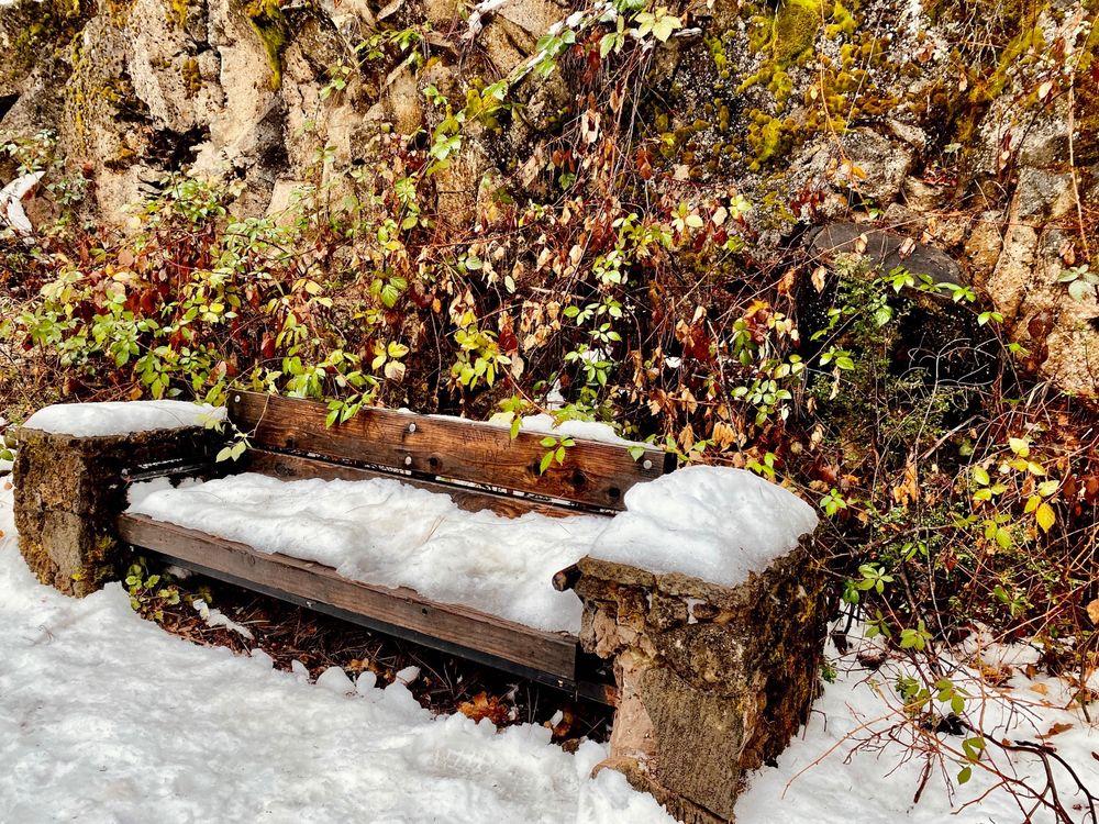 McCloud River Preserve: 701 S Mount Shasta Blvd, Mount Shasta, CA