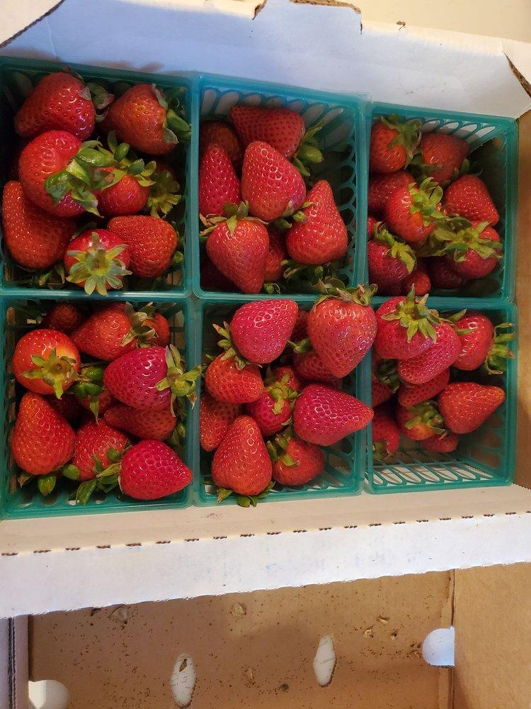 Thacker Berry Farms: 115 North Harbor, La Habra, CA