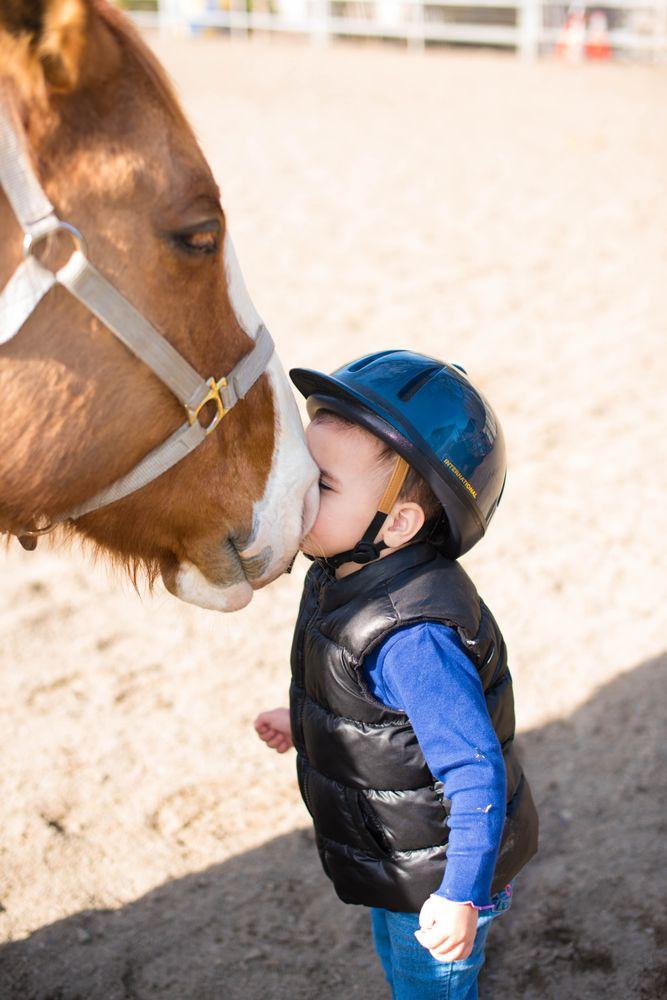 All Seasons Horse Riding: 1111 Stone Valley Rd, Alamo, CA