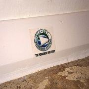 Best Of Basement Waterproofing Knoxville