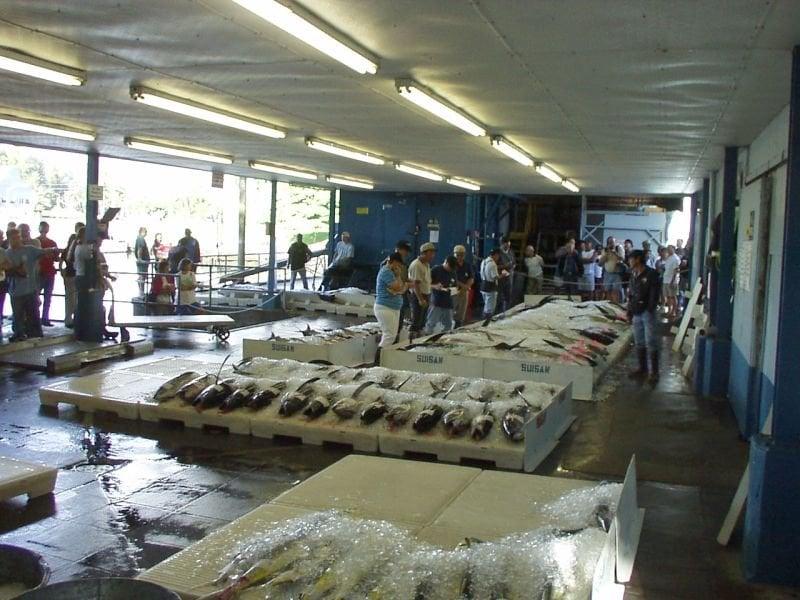 Photos for suisan fish market yelp for Suisan fish market