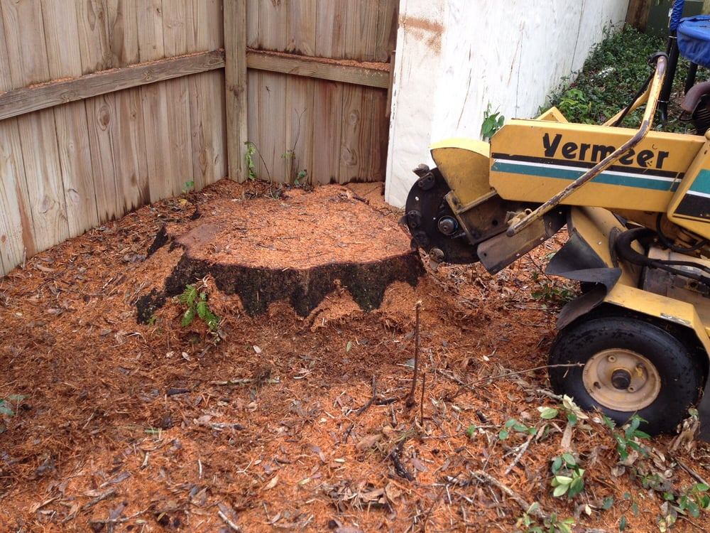 Tom's Stump Grinding