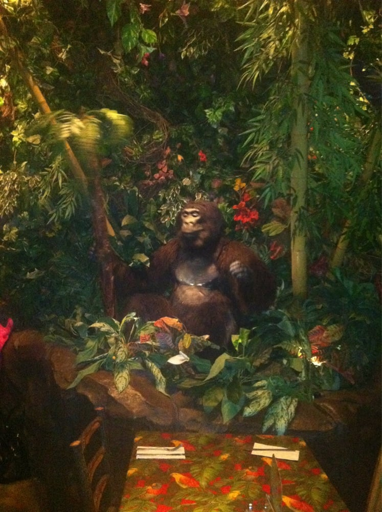 Rainforest Cafe Nj Yelp