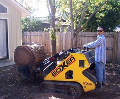 SilverLeaf Tree Service: Aromas, CA