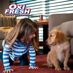 Oxi Fresh Carpet Cleaning - 20 Photos