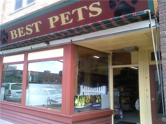 Best Pets: 905 Washington Ave, Detroit Lakes, MN