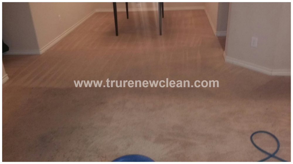 Apartment Carpet Cleaning Yelp