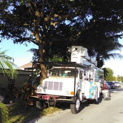 Go Green Affordable Tree Service Services Miami Fl Phone Number Yelp