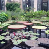 Longwood gardens 1685 photos 382 reviews botanical - Places to eat near longwood gardens ...