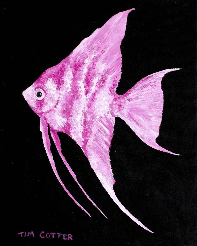 Fancy Fishy