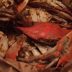 Crab hut seafood markets 3601 terminal ave cherry for Fish market richmond va