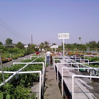 Photo Of Moneta Nursery Gardena Ca United States 5