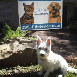 Invisible fence brand of austin 11 photos 24 reviews pet photo of invisible fence brand of austin austin tx united states solutioingenieria Image collections
