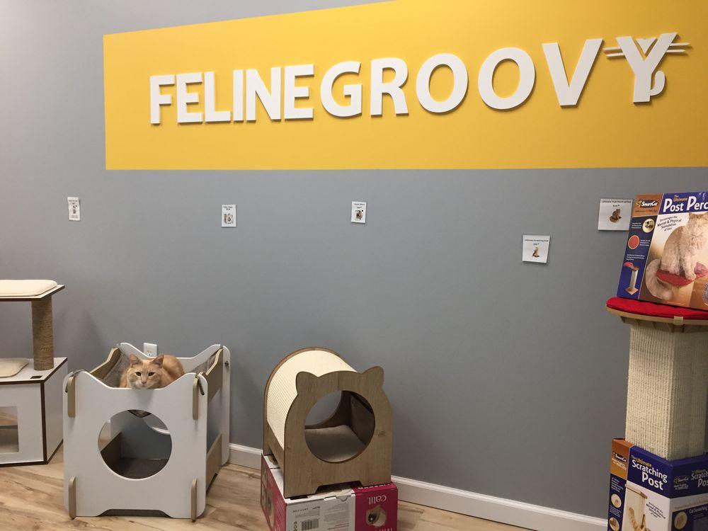 Feline Groovy: 6130 E Central Ave, Wichita, KS