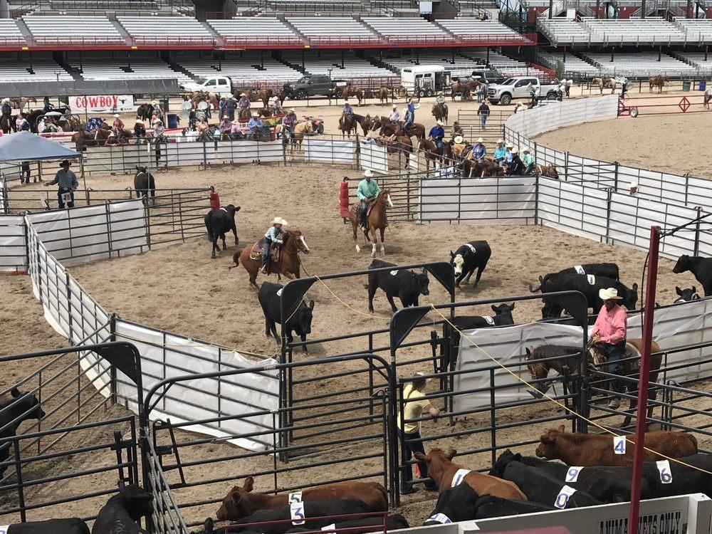 Cheyenne Frontier Days: 4610 Carey Ave, Cheyenne, WY