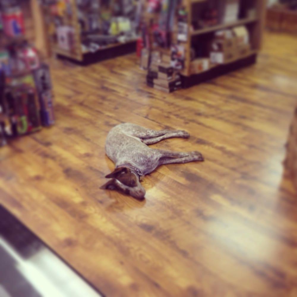 Burdett & Son Outdoor Adventure Shop: 1055 Texas Ave S, College Station, TX