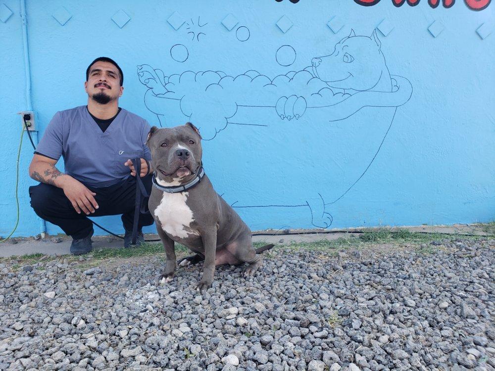 Tio Betito's Grooming: 7554 Doniphan Dr, Canutillo, TX