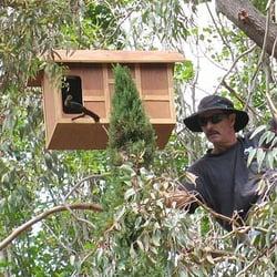 Barn Owl Boxes - Pet Services - Ramona, CA - Yelp