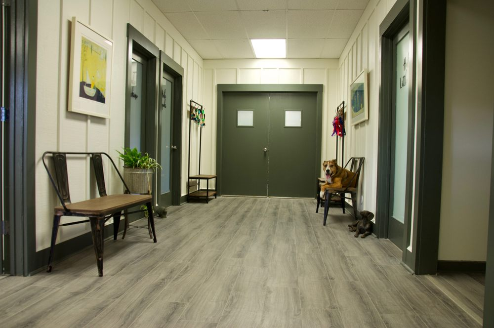 Makawao Veterinary Clinic Boarding, Grooming, & Health Center: 444 A Makawao Ave, Makawao, HI