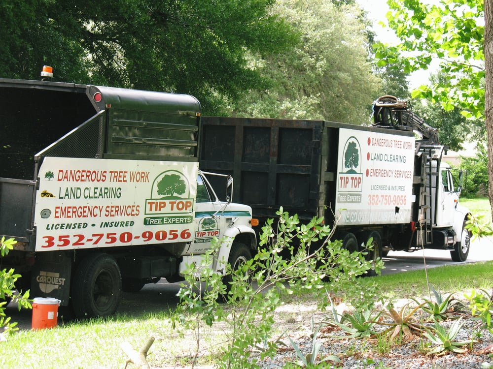 Tip Top Tree Experts: 41711 Lillian Ln, Weirsdale, FL