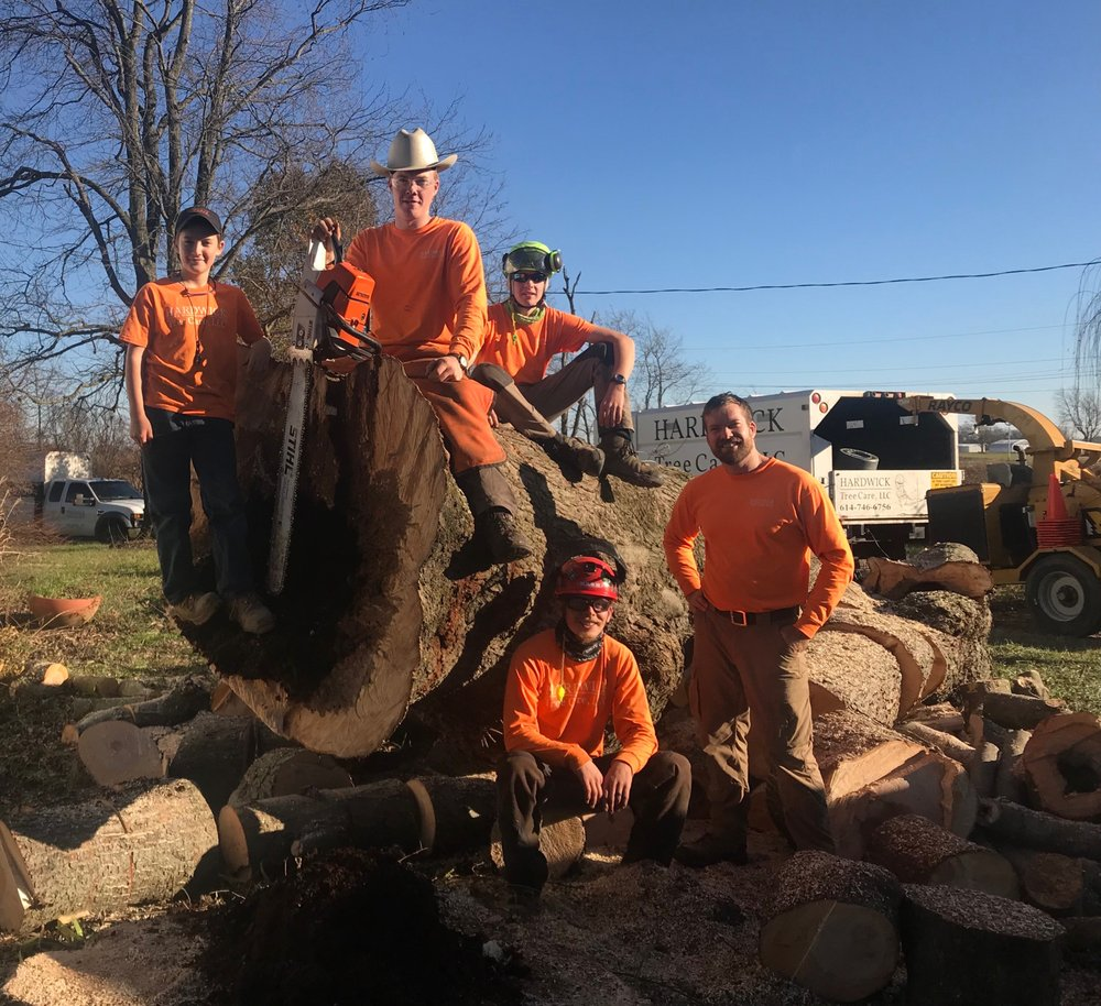 Hardwick Tree Care, LLC: Centerburg, OH