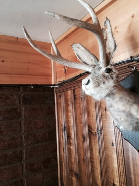 Hitching Post Cafe & Bar: 605 High, Judith Gap, MT