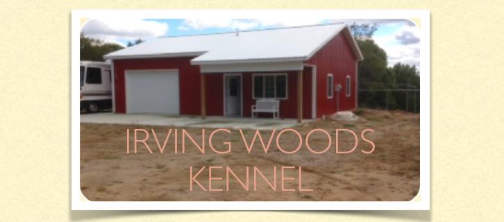 Irving Woods Kennel: 7068 Irving Rd, Middleville, MI