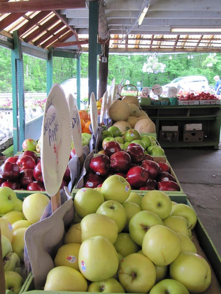 Culver Lake Nursery & Farm Market: 443 US Hwy 206, Branchville, NJ