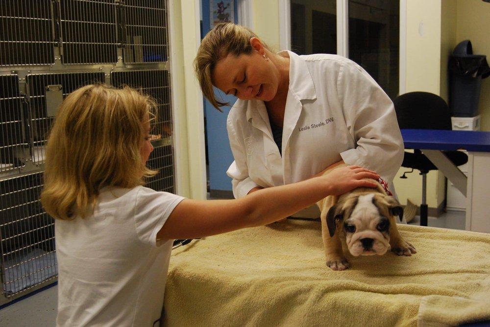 Advanced Animal Care of Mt. Pleasant
