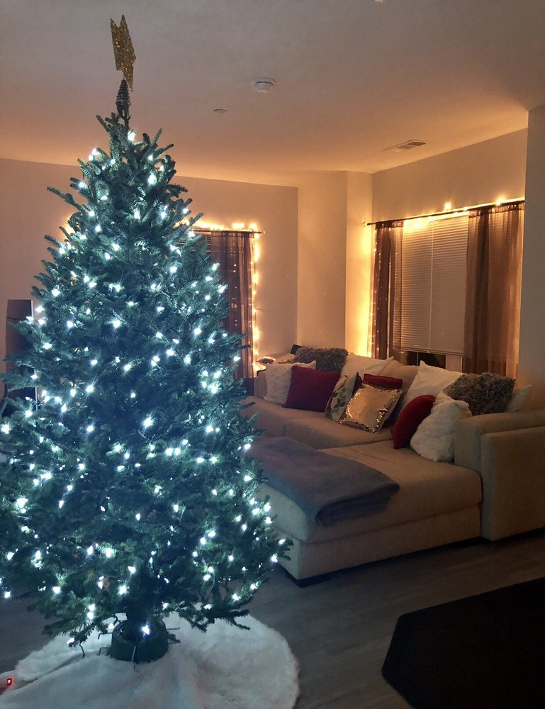 Danny's Christmas Trees And Wreaths: 7 Dempsey Pl, Eastchester, NY