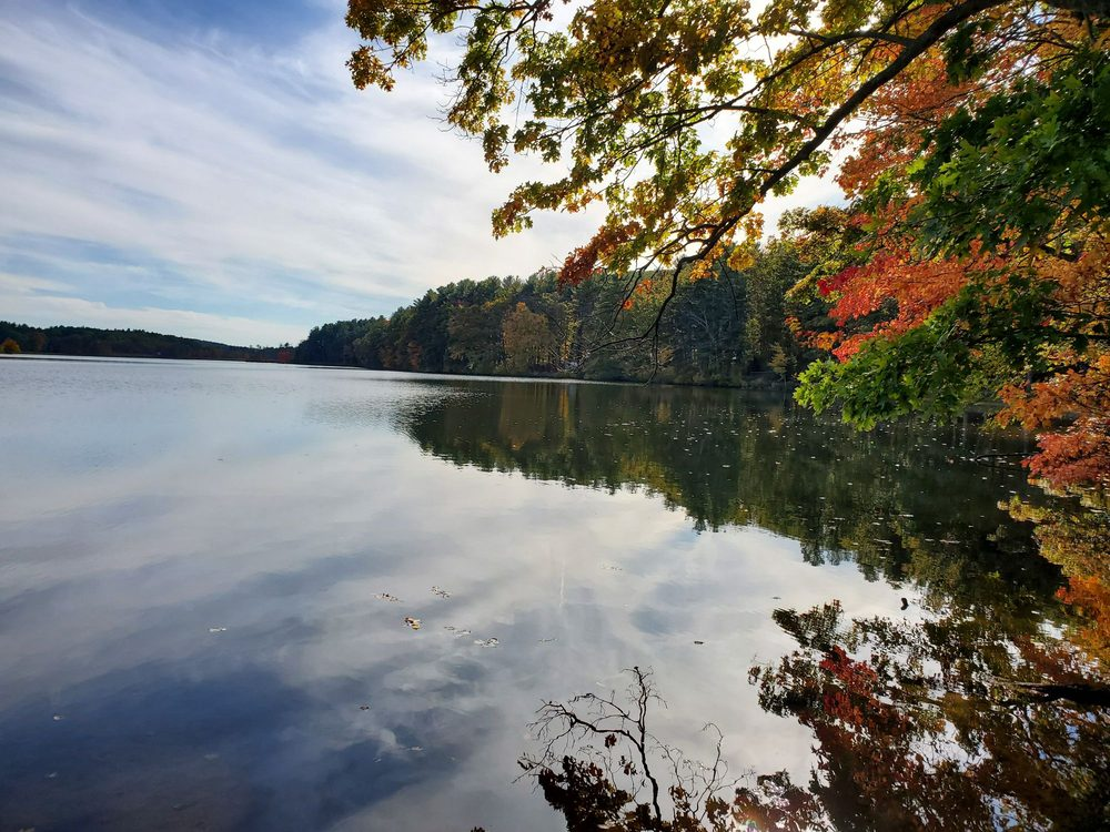 Wells State Park: 159 Walker Pond Rd, Sturbridge, MA