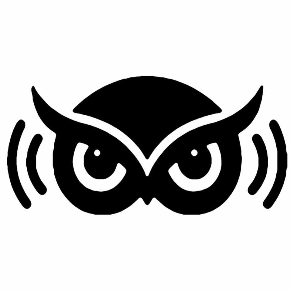 SoundWise AV & Home Automation