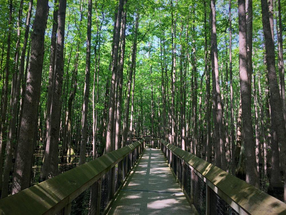 Louisiana Purchase Historic State Park: Ar Hwy 362, Brinkley, AR