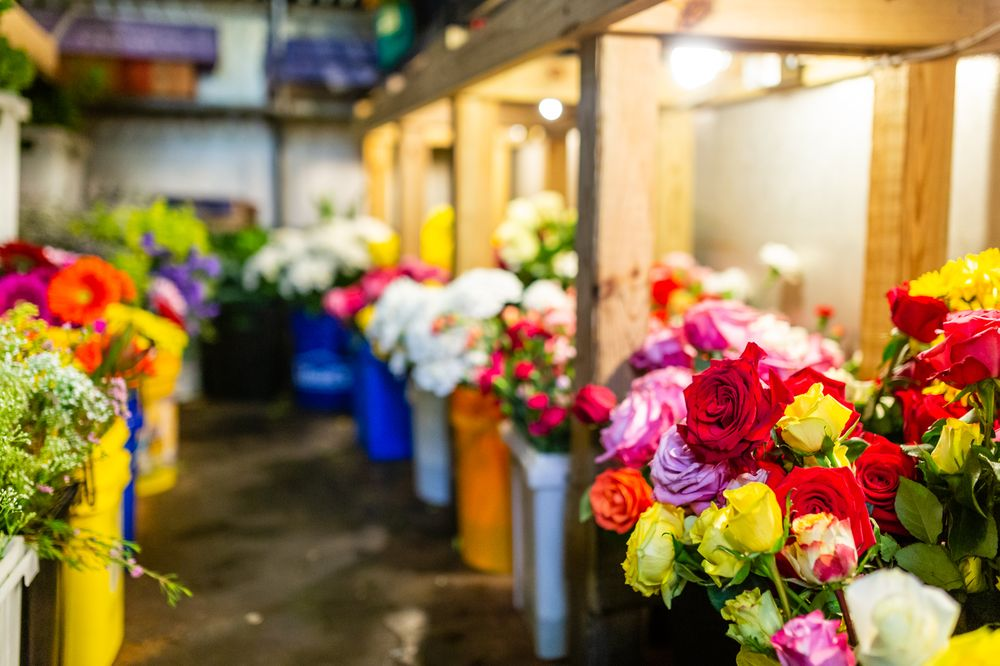 Country Florist: 3040 Old Washington Rd, Waldorf, MD