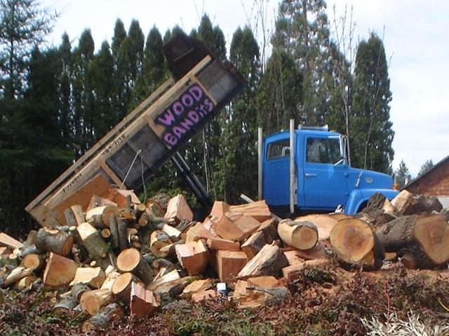 Wood Bandits Firewood: Lacey, WA
