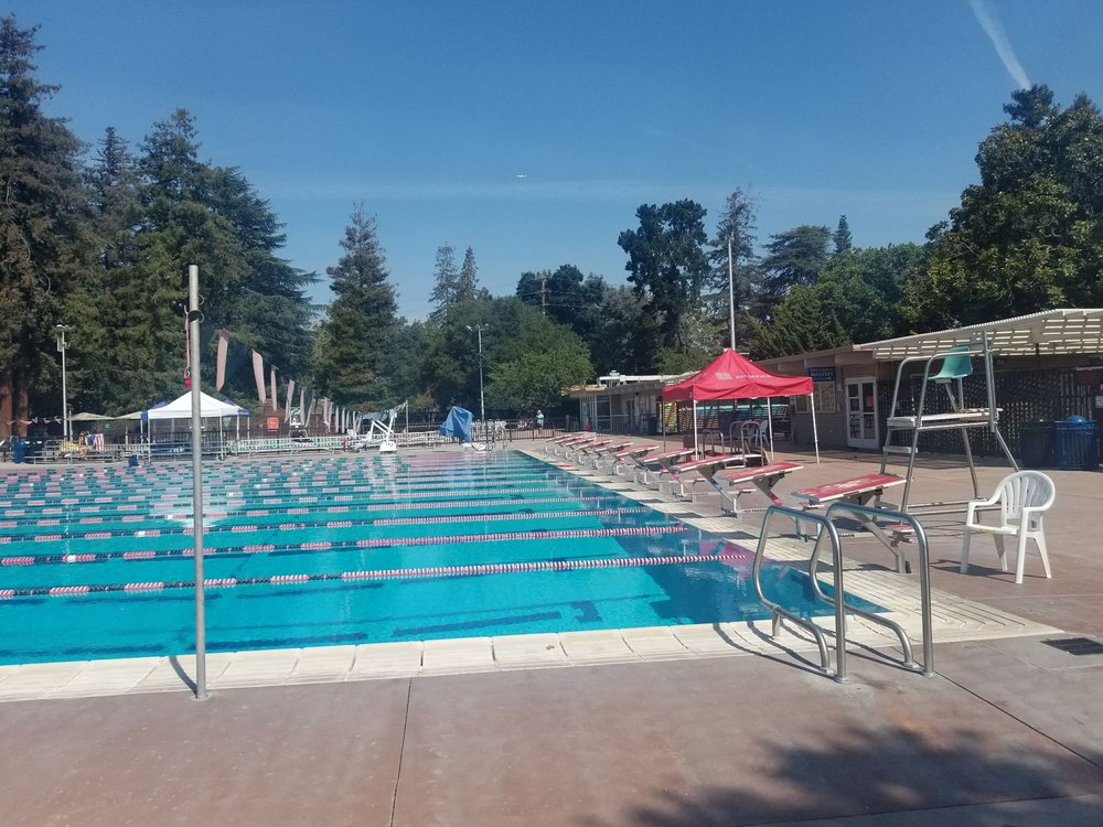 View of the lap pool yelp - Palo alto ymca swimming pool schedule ...
