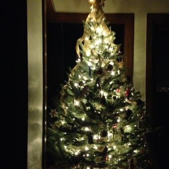 the living christmas company 13 photos 42 reviews christmas trees 800 s pacific coast hwy redondo beach ca phone number yelp - Living Christmas Tree