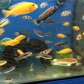 Walmart closed 19 photos 41 reviews department for Fish store austin