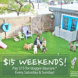 Photos for the best little dog house in texas yelp for Best little dog house in texas