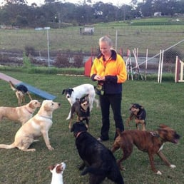 Photo Of Australian Canine Sports And Training Centre Box Hill New South Wales Australia