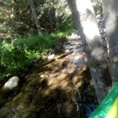 Reyes Creek Campground - 113 Photos & 26 Reviews - Hiking