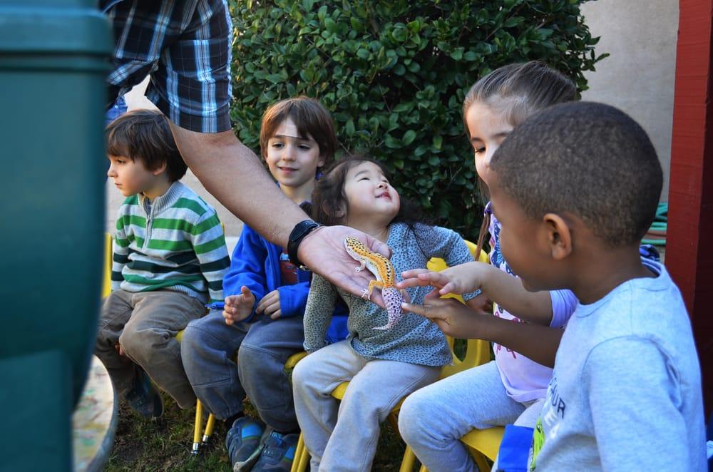 culver city preschool ninos preschool program 50 photos amp 10 reviews 576