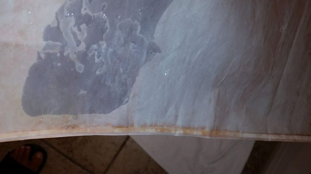 Pink Mold On Shower Curtain